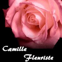 La circulaire de Camille Fleuriste