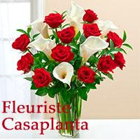 La circulaire de Fleuriste Casaplanta