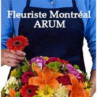 La circulaire de Fleuriste Montréal ARUM