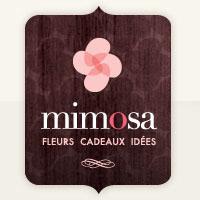 La circulaire de Mimosa Fleur