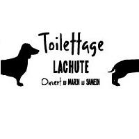 La circulaire de Toilettage Lachute