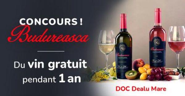Concours Gagnez Du Vin Gratuit Pendant Un An!
