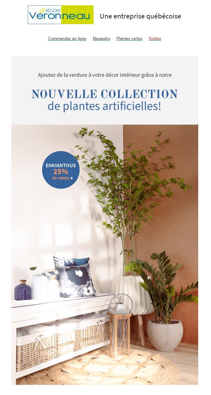 De Nouvelles Plantes Pour Illuminer Votre Décor!