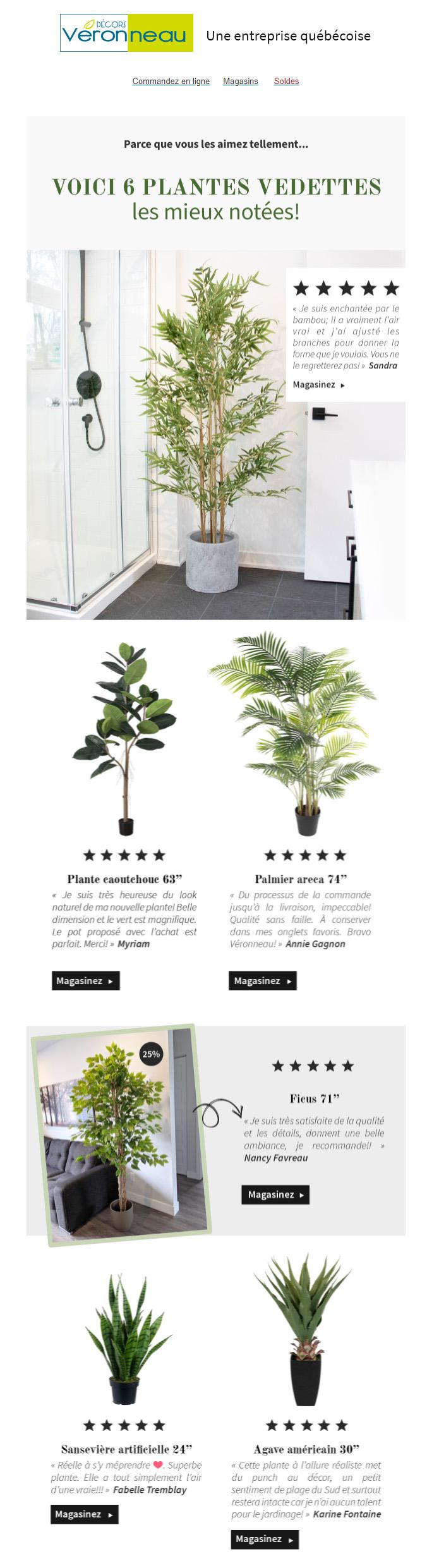 Découvrez Nos Plantes